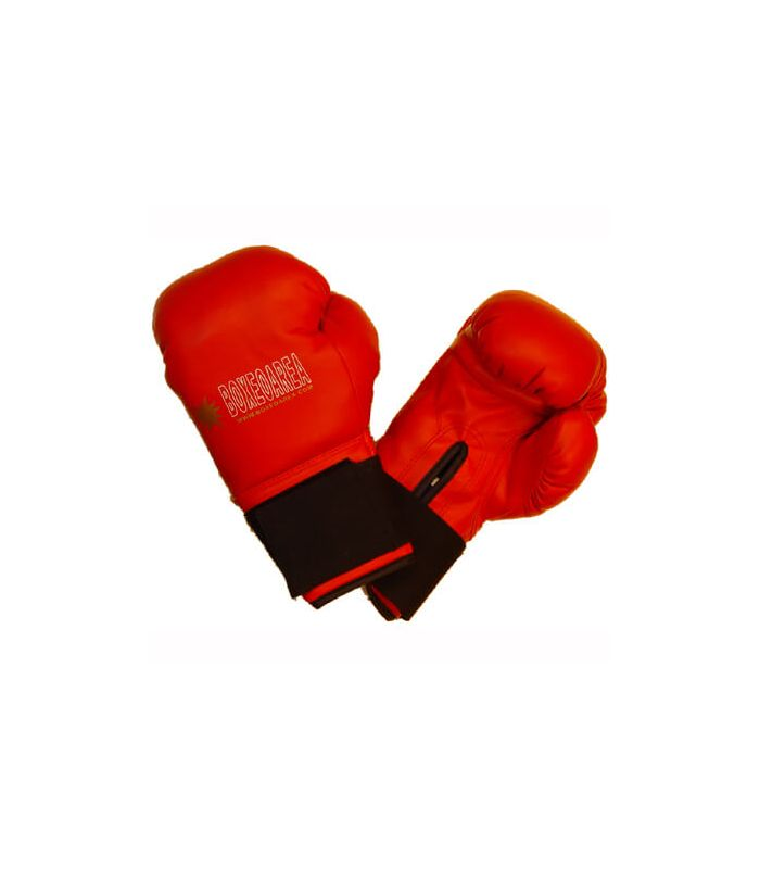 Boxing gloves Royal 1806 Red - Boxing gloves