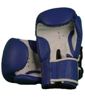 Boxing gloves 108 Blue - Boxing gloves